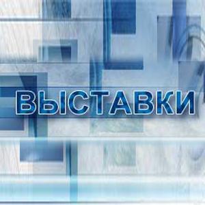 Выставки Каневской